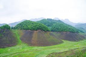 绿江村的山峰绿地