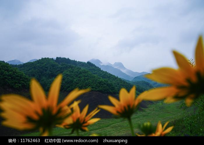 绿江村青山图片