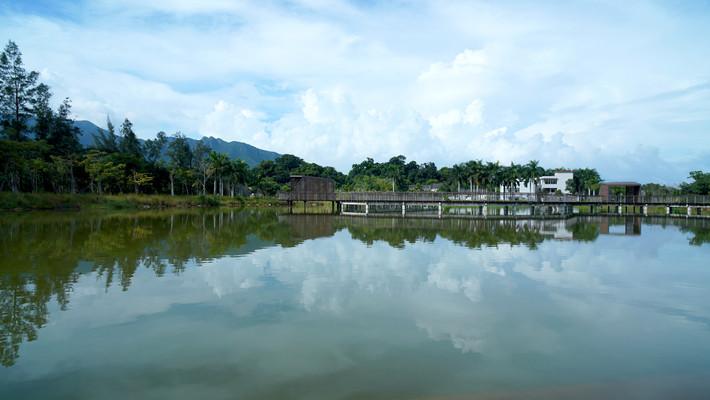 深圳坝光银叶树湿地园水倒影观景长廊