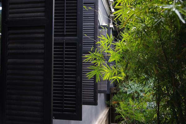 竹林与窗户